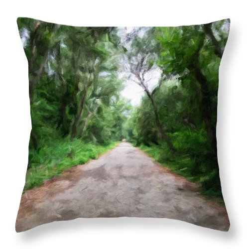 Santa Maria Throw Pillow featuring the photograph Into The Woods by Jonathan Nguyen