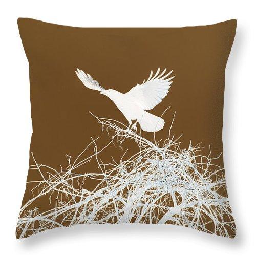 Bird Throw Pillow featuring the photograph Inverted Crow by Deborah Benoit