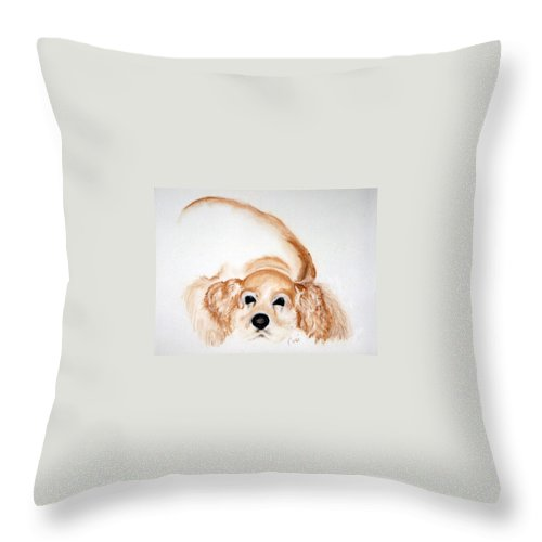 Cocker Spaniel Throw Pillow featuring the drawing Ipo's Dream by Cori Solomon