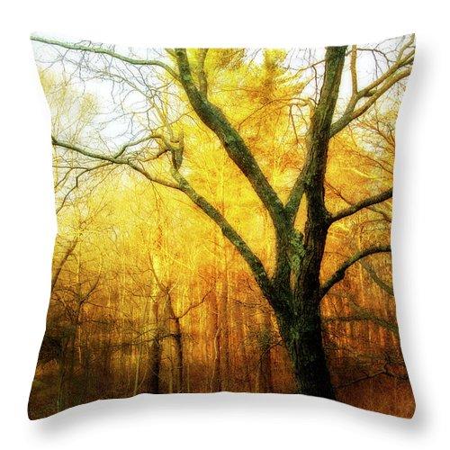 Tree Throw Pillow featuring the digital art Ipswich 2 by Terry Davis