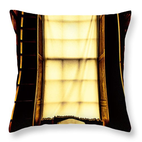 Water Throw Pillow featuring the photograph Ireland Trinity by James Fitzpatrick