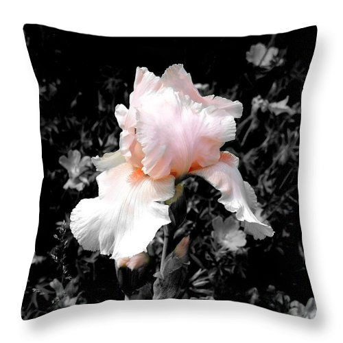 Flower Throw Pillow featuring the photograph Iris Emergance by Steve Karol