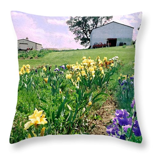 Landscape Painting Throw Pillow featuring the photograph Iris Farm by Steve Karol