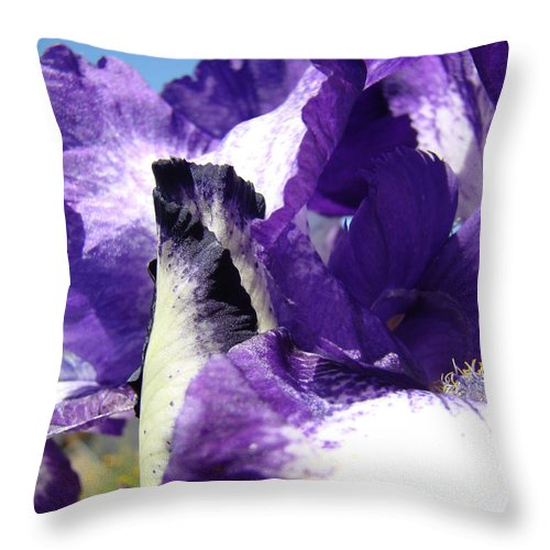 �irises Artwork� Throw Pillow featuring the photograph Iris Flower Art Print Purple Irises Botanical Floral Artwork by Baslee Troutman