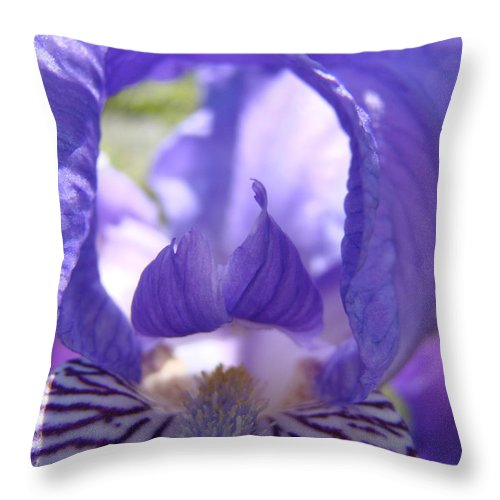 �irises Artwork� Throw Pillow featuring the photograph Iris Flower Purple Irises Floral Botanical Art Prints Macro Close Up by Baslee Troutman