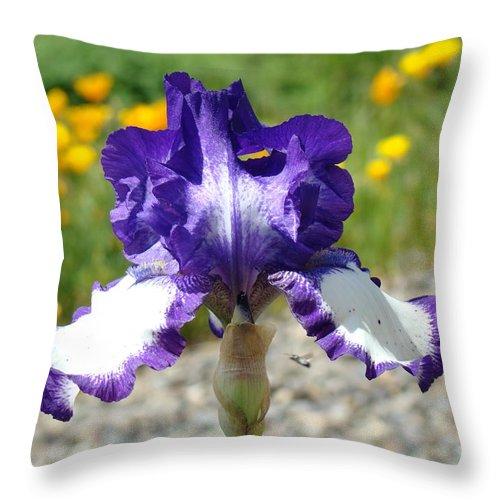 �irises Artwork� Throw Pillow featuring the photograph Iris Flower Purple White Irises Nature Landscape Giclee Art Prints Baslee Troutman by Baslee Troutman