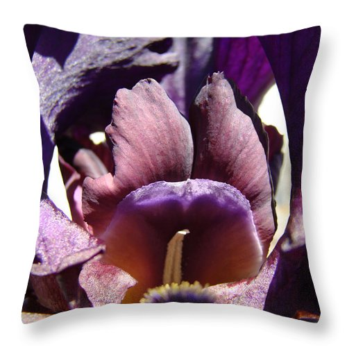 �irises Artwork� Throw Pillow featuring the photograph Iris Flowers Purple Irises Artwork Prints Framed Canvas Cards Nature Gardens by Baslee Troutman