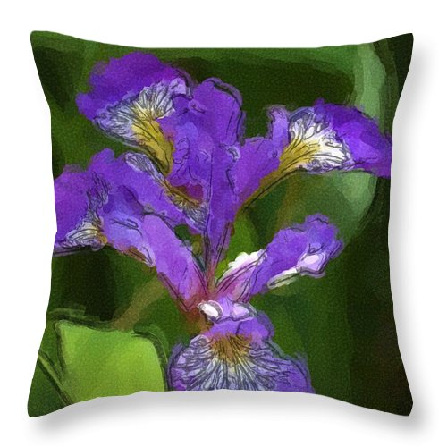 Digital Photograph Throw Pillow featuring the photograph Iris II by David Lane