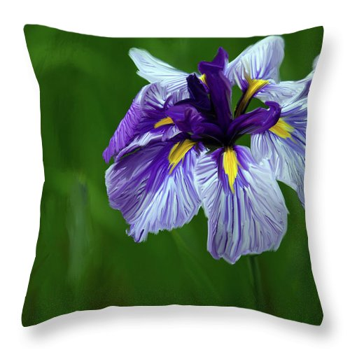Iris Throw Pillow featuring the photograph Iris by June Marie Sobrito