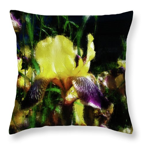 Iris Throw Pillow featuring the photograph Iris Purple And Yellow by Jo-Anne Gazo-McKim
