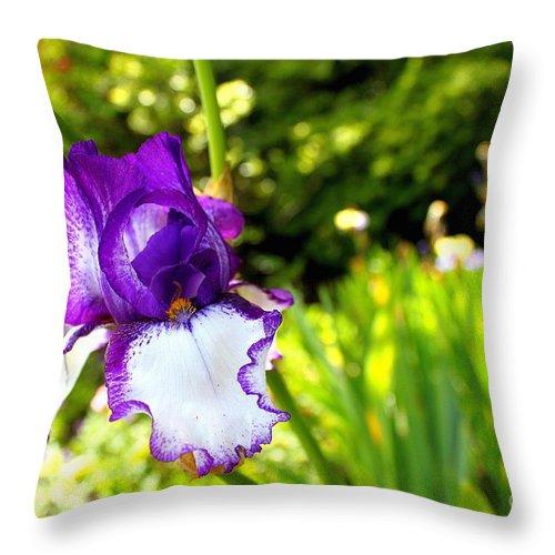 Iris Throw Pillow featuring the photograph Iris by Samiksa Art