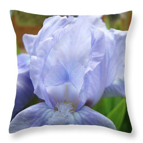 �irises Artwork� Throw Pillow featuring the photograph Irises Blue Iris Flower Light Blue Art Flower Soft Baby Blue Baslee Troutman by Baslee Troutman