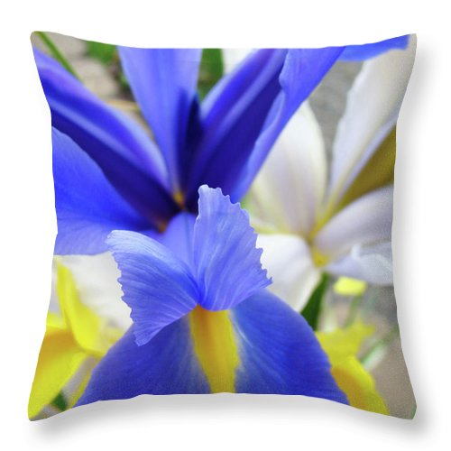 �irises Artwork� Throw Pillow featuring the photograph Irises Flowers Artwork Blue Purple Iris Flowers 1 Botanical Floral Garden Baslee Troutman by Baslee Troutman