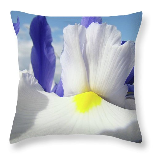 �irises Artwork� Throw Pillow featuring the photograph Irises White Iris Flowers 15 Purple Irises Art Prints Floral Artwork by Baslee Troutman