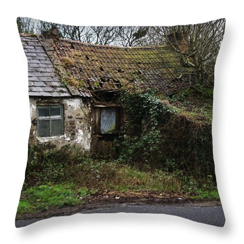 Hovel Throw Pillow featuring the photograph Irish Hovel by Tim Nyberg