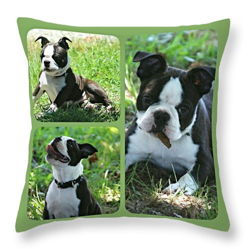 Is Autumn Here Yet? Throw Pillow featuring the photograph Is Autumn Here Yet? by Maria Urso