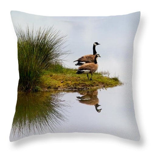 Canada Geese Throw Pillow featuring the photograph Is This Heaven by Randall Ingalls
