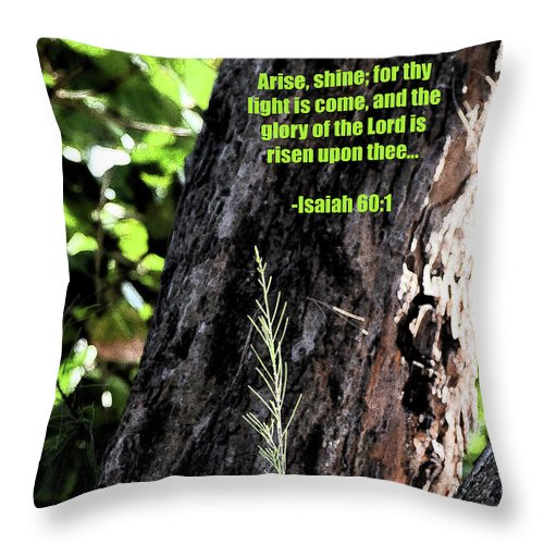 Inspirational Throw Pillow featuring the photograph Isaiah 61 Verse 1 by William Tasker
