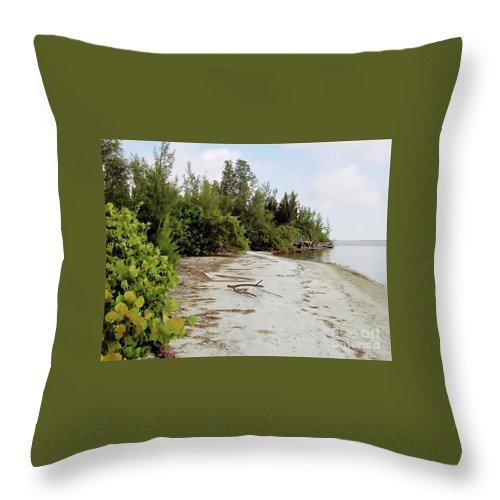 Island Throw Pillow featuring the photograph Island - Beach by D Hackett