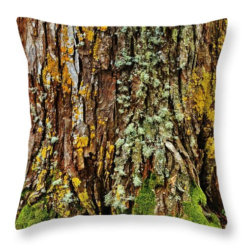 Tree Throw Pillow featuring the photograph Island Moss by JAMART Photography