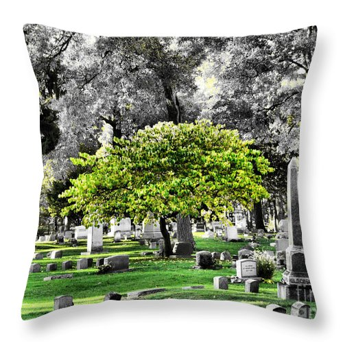 Tree Throw Pillow featuring the photograph Isolated by September Stone