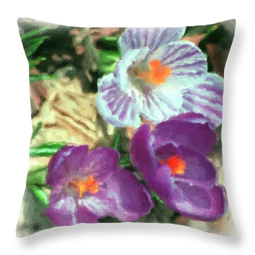 Digital Photography Throw Pillow featuring the photograph Ist Flowers In The Garden 2010 by David Lane