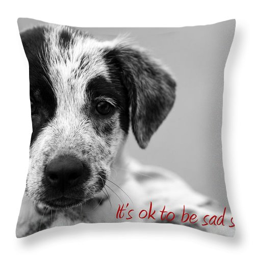 posters For Kids Throw Pillow featuring the photograph It by Amanda Barcon