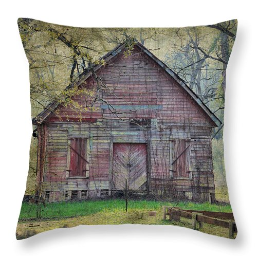Landscapes Throw Pillow featuring the photograph It May Be Silenced But I See by Jan Amiss Photography