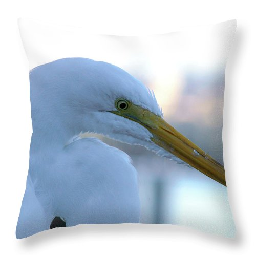 Egret Throw Pillow featuring the photograph It Seemed Like A Dream by Lorenzo Williams