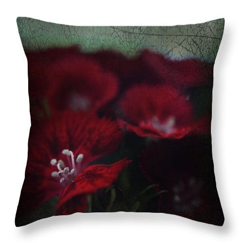 Flowers Throw Pillow featuring the photograph It's A Heartache by Laurie Search