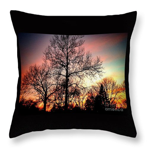 Midwest Throw Pillow featuring the photograph Its Only One Day by Frank J Casella