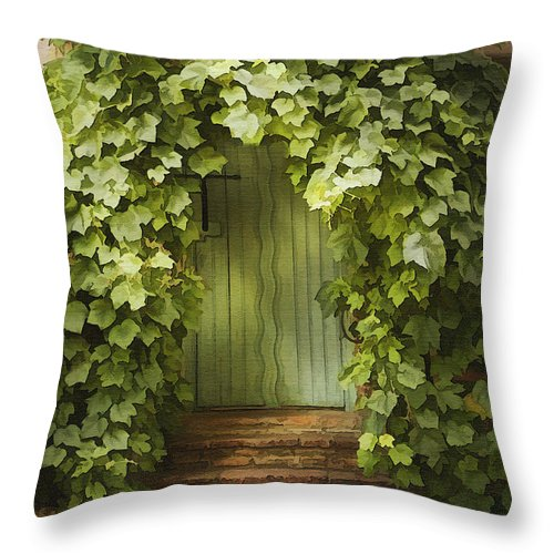 Architecture Throw Pillow featuring the photograph Ivy Door by Sharon Foster