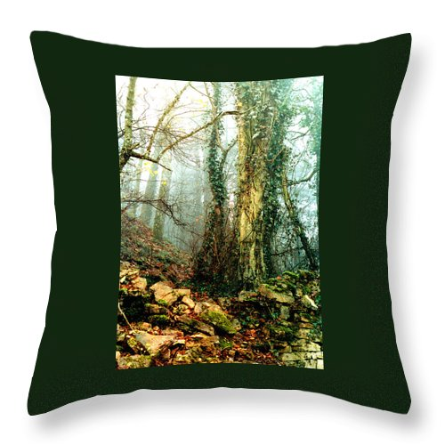 Ivy Throw Pillow featuring the photograph Ivy In The Woods by Nancy Mueller