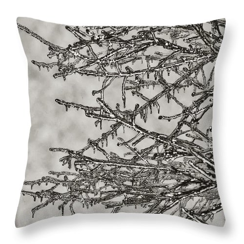 Ice Throw Pillow featuring the photograph Jack Frost by Bill Cannon
