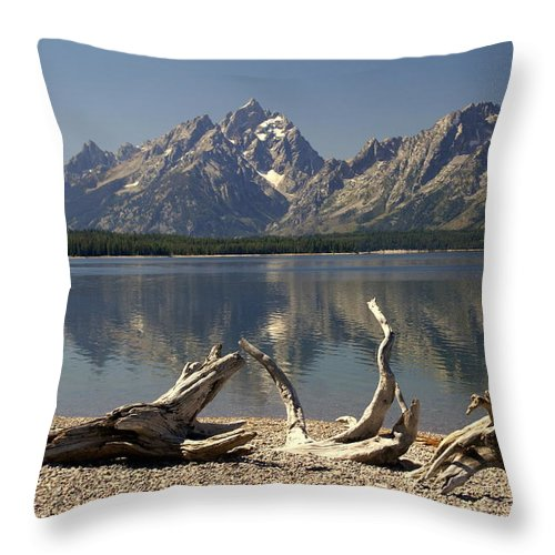 Grand Teton National Park Throw Pillow featuring the photograph Jackson Lake 1 by Marty Koch