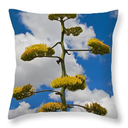Blue Throw Pillow featuring the photograph Jacobs Ladder by Skip Hunt
