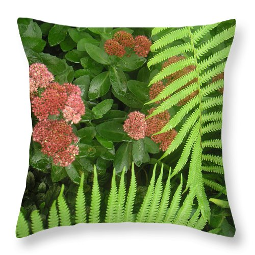 Nature Throw Pillow featuring the photograph Jacqueline's Garden - Camaraderie Of Textures Too by Lucyna A M Green