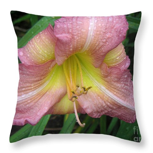 Nature Throw Pillow featuring the photograph Jacqueline's Garden - Lily Glistening Too by Lucyna A M Green
