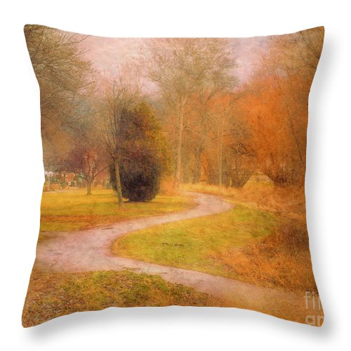 Road Throw Pillow featuring the photograph January 14 2010 by Tara Turner