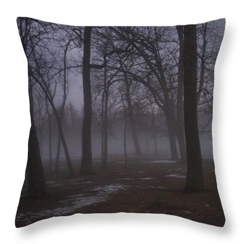 January Throw Pillow featuring the photograph January Fog 2 by Anita Burgermeister