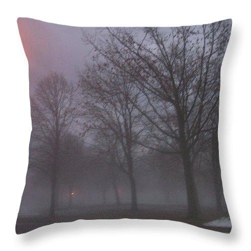 January Throw Pillow featuring the photograph January Fog 3 by Anita Burgermeister