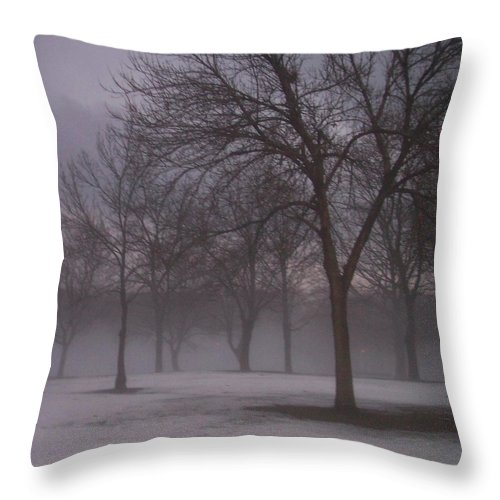 January Throw Pillow featuring the photograph January Fog 4 by Anita Burgermeister