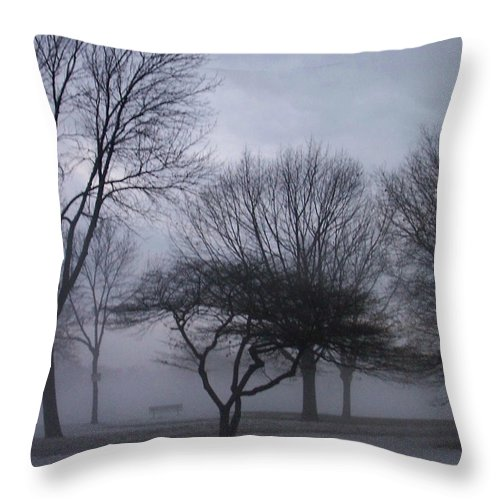 January Throw Pillow featuring the photograph January Fog 6 by Anita Burgermeister