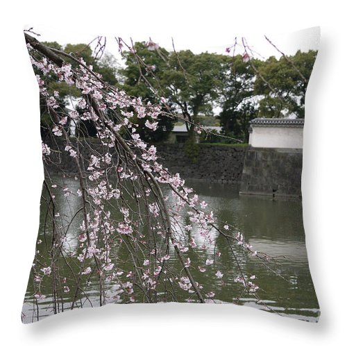 Tokyo Throw Pillow featuring the photograph Japan Cherry Tree Blossom by Cream Cake