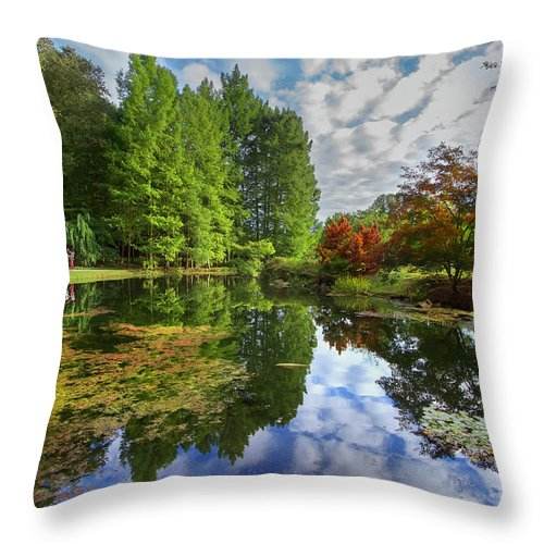 Japanese Garden Maymont Park Virginia Autumn Family Stroll Trees Koi Fish Algae Reflection Pond Brook Stream Blue Cloudy Sky Throw Pillow featuring the photograph Japanese Garden Pond I by Karen Jorstad