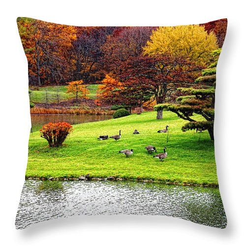 Fall Landscape Throw Pillow featuring the photograph Japanese Island Fall Colors by Anna Sheradon