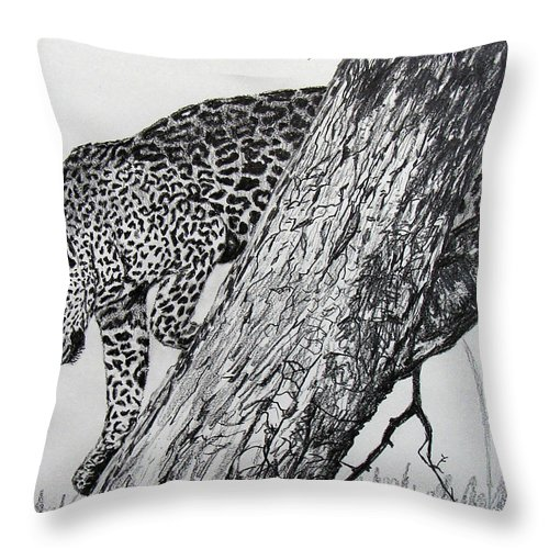 Original Drawing Throw Pillow featuring the drawing Jaquar In Tree by Stan Hamilton