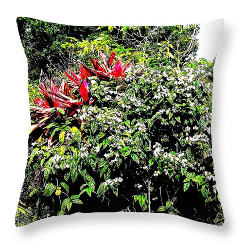 Square Throw Pillow featuring the digital art Jardinagem by Eikoni Images