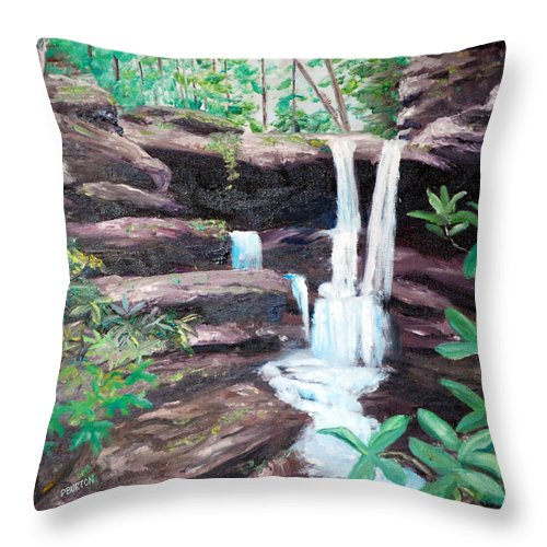 Jenny Wiley Throw Pillow featuring the painting Jenny Falls by Phil Burton