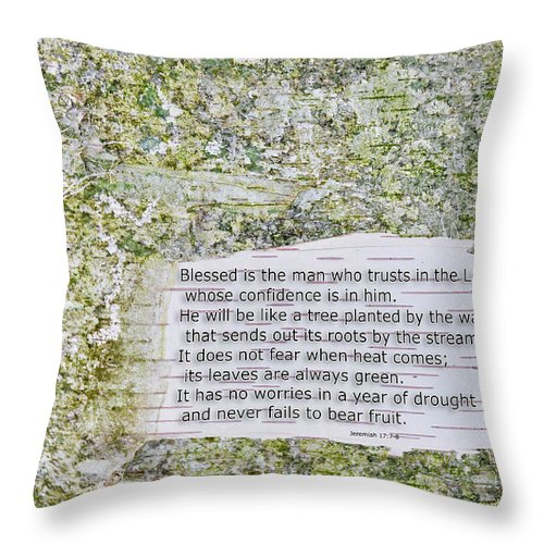 Background Throw Pillow featuring the photograph Jeremiah 17 by David Arment